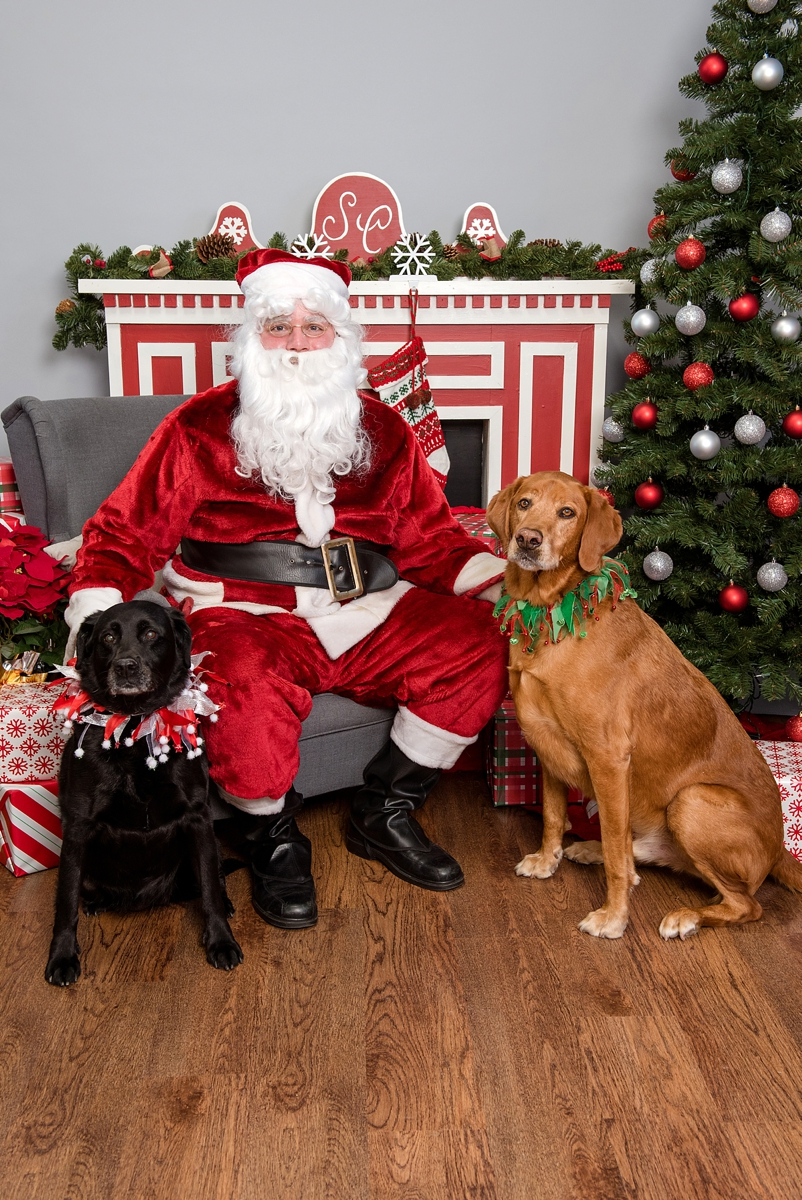 pet photos with Santa Petagogy Greensburg 007.jpg