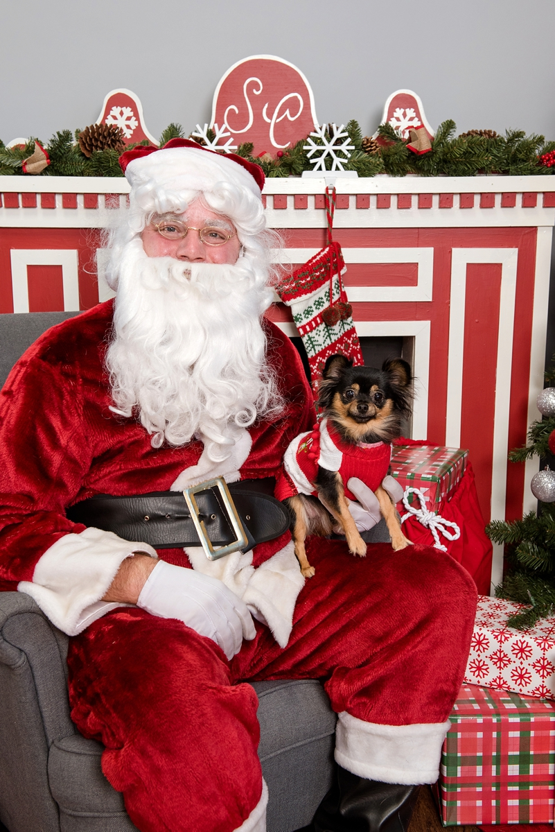 pet photos with Santa Petagogy Greensburg 010.jpg