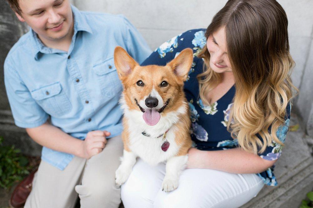 Jenny Karlsson Pet Photography Pittsburgh 065.jpg