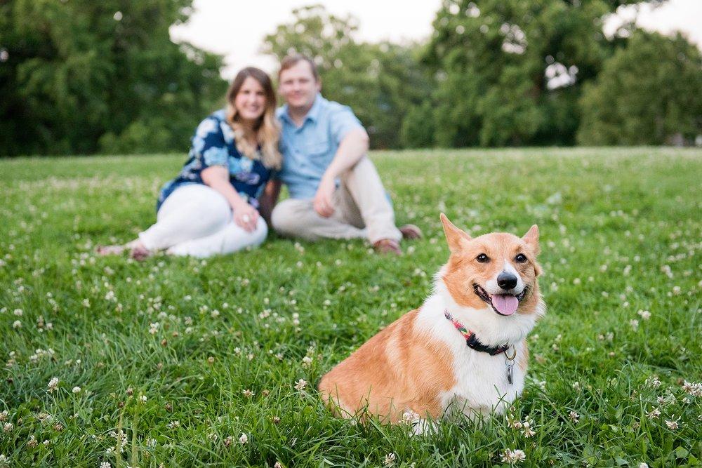 Jenny Karlsson Pet Photography Pittsburgh 090.jpg