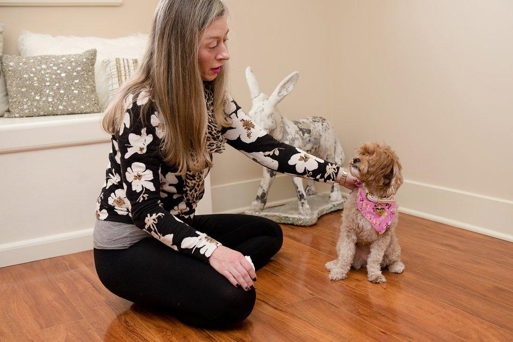Jenny Karlsson Pet Photography Pittsburgh 156.jpg