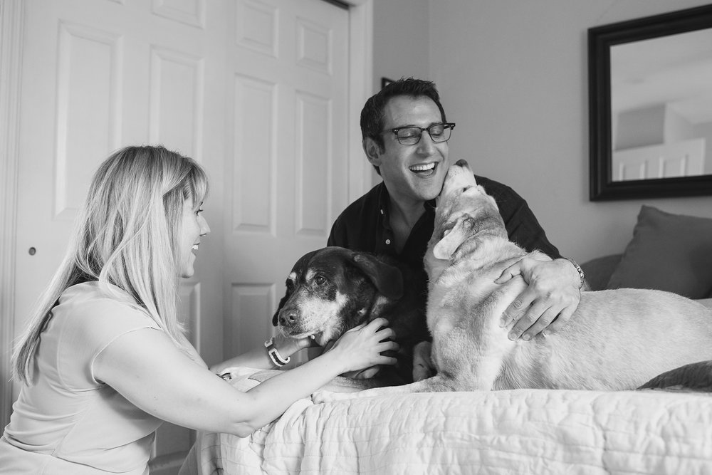 Jenny Karlsson Pet Photography Pittsburgh 011.jpg