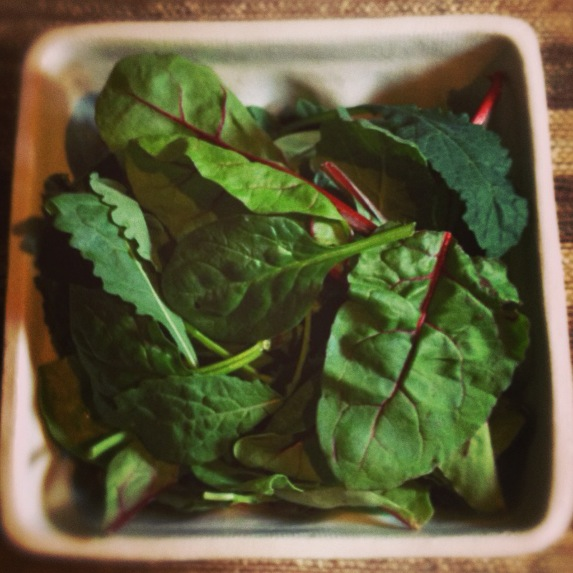 Mixed Baby Greens - spinach, kale and chard