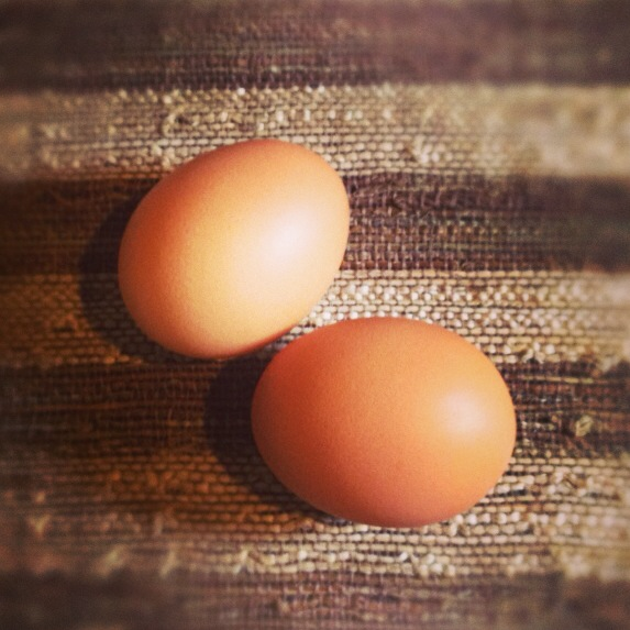 Eggs Pack Protein