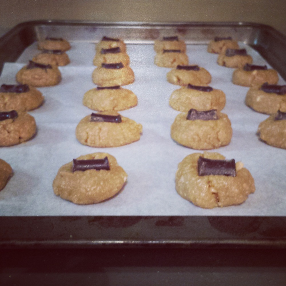 Yummy peanut butter cookies, all in a row