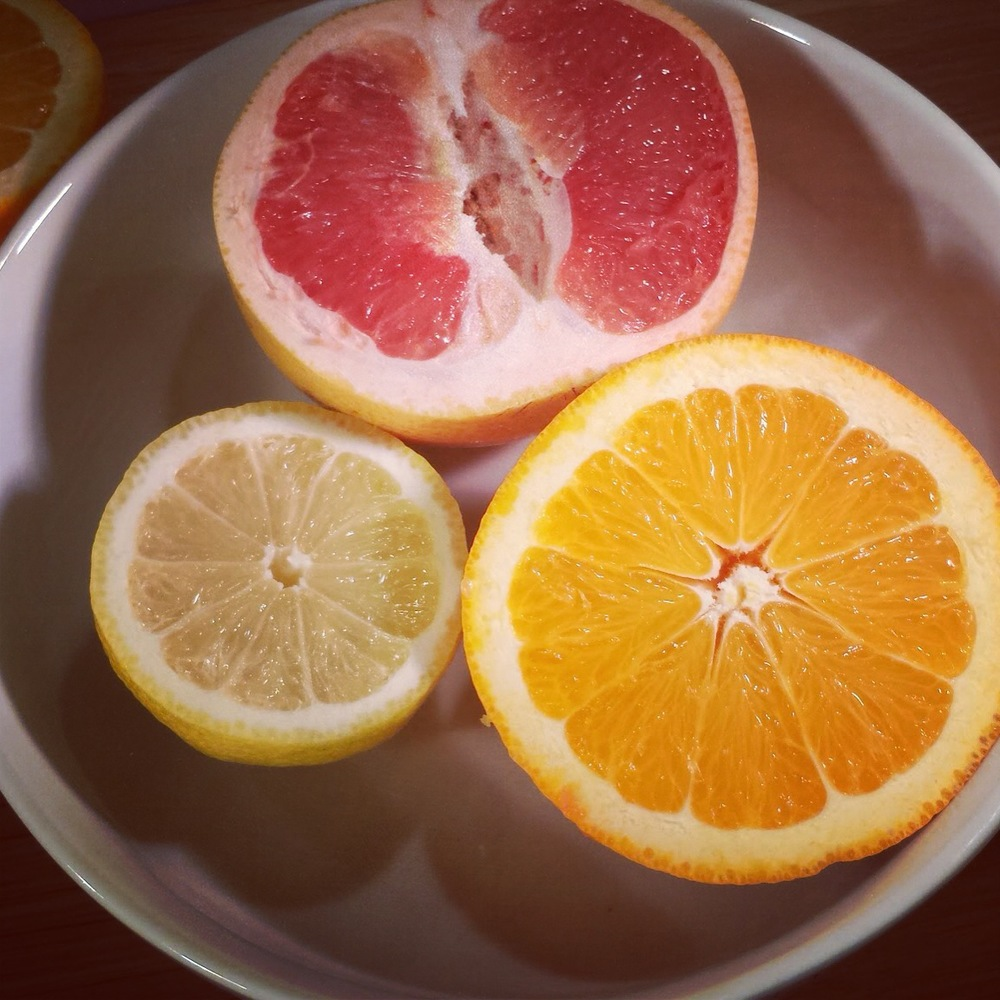 Grapefruit Orange Lemon.JPG