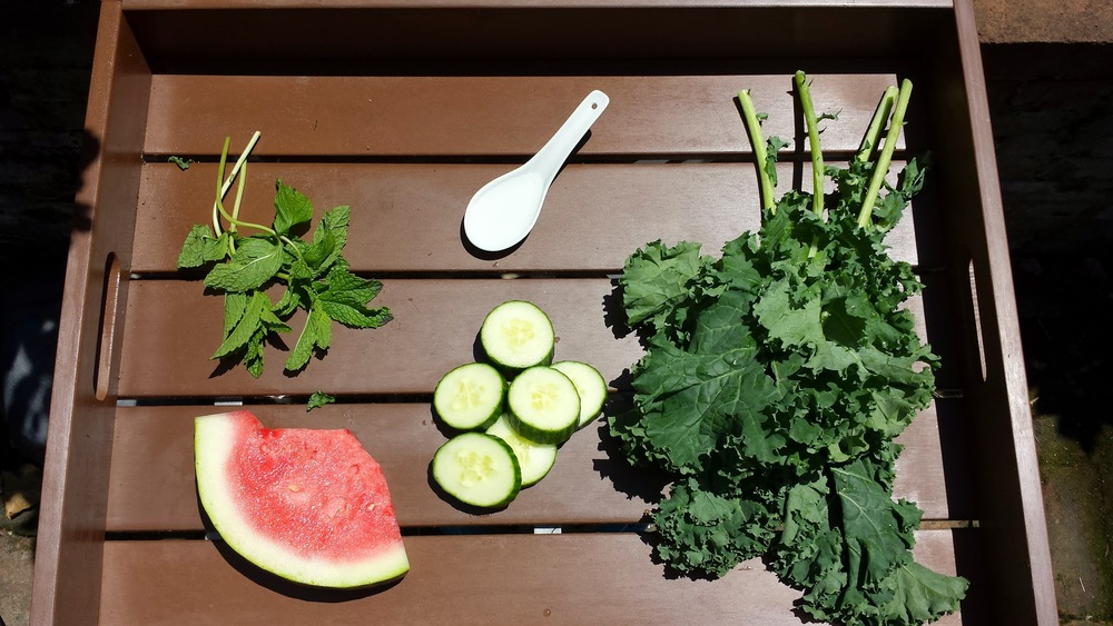 Green Juice Ingredients.JPG