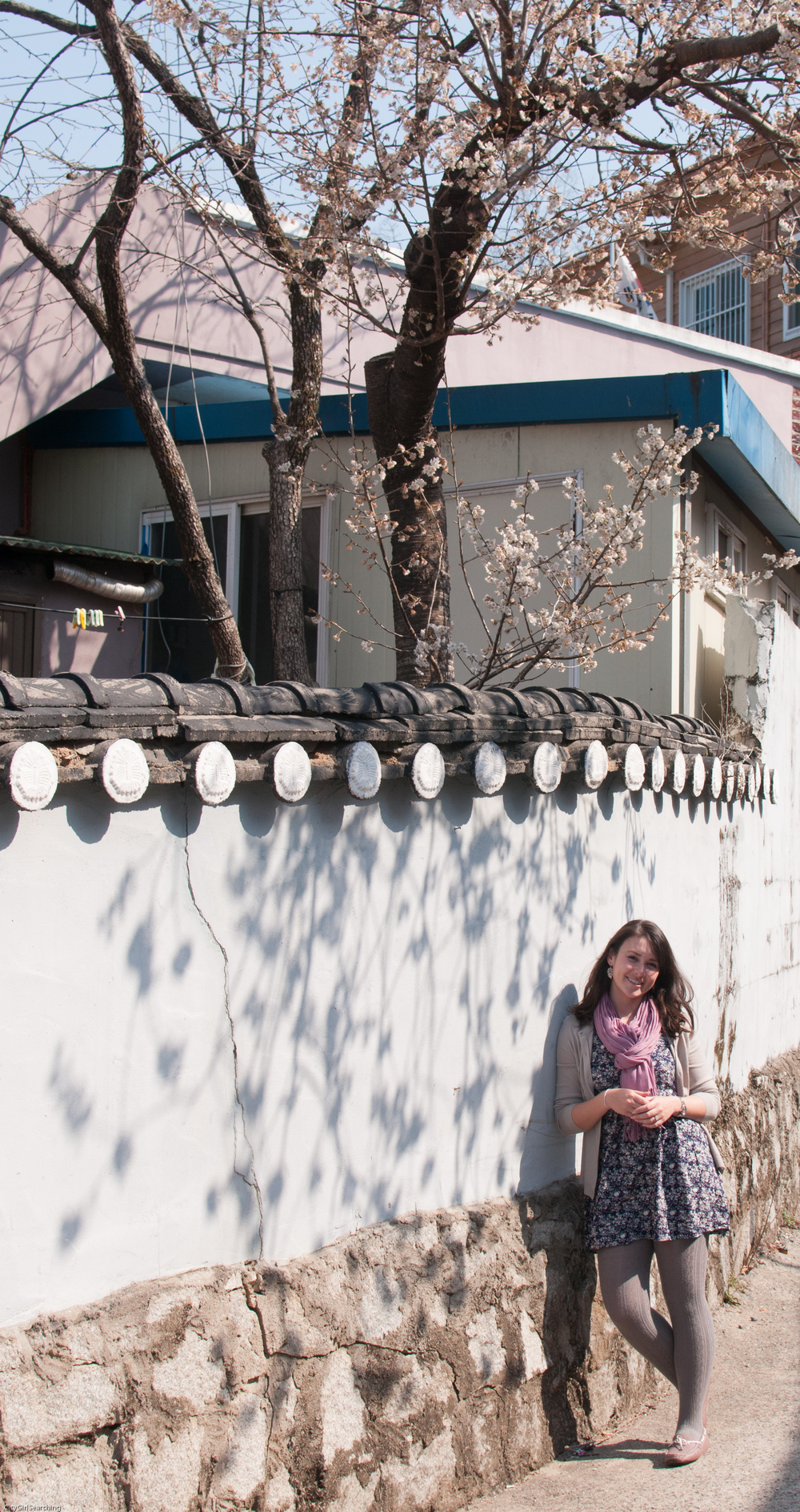 SouthKoreaCherryBlossomsMaewhaFestivalCityGirlSearching (10 of 22).jpg