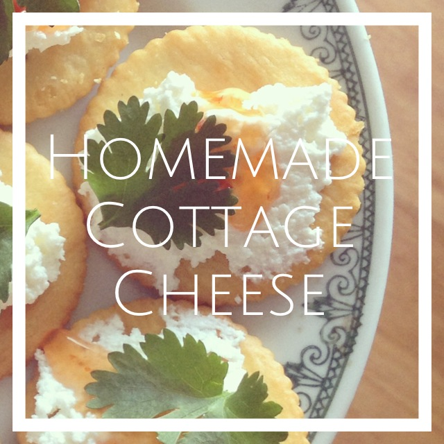 HomemadeCottageCheeseRecipe