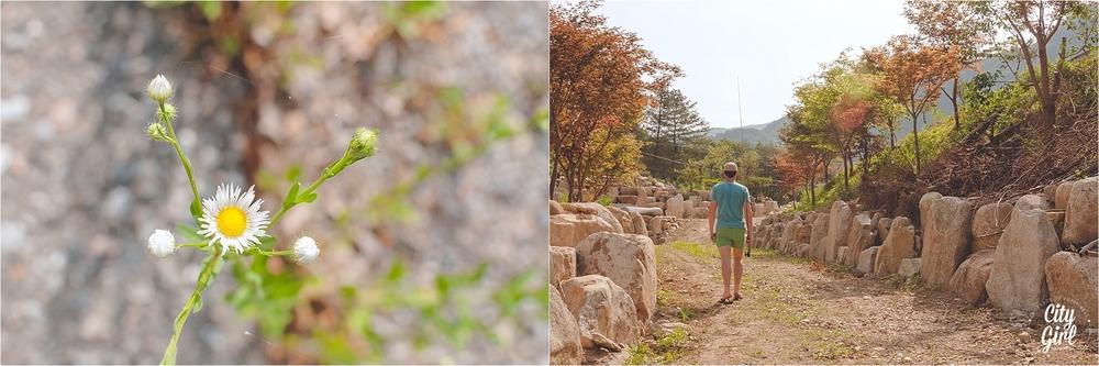 CGSCampingInKoreaGangwonProvince_0019.jpg