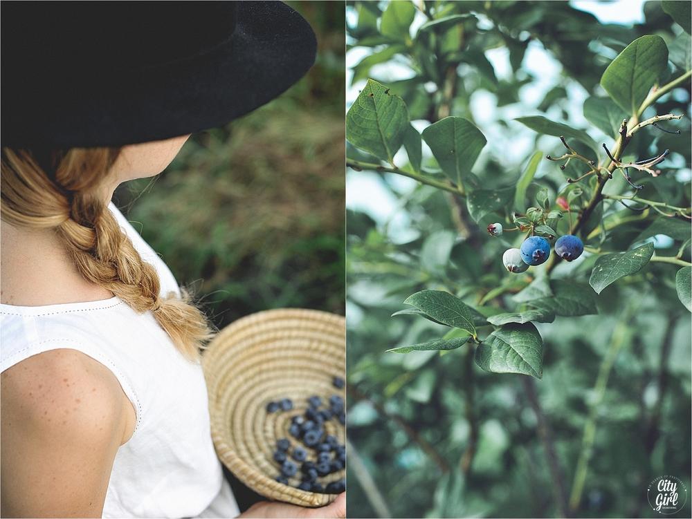 BlueberryFarmSouthKoreaHelen_0012.jpg