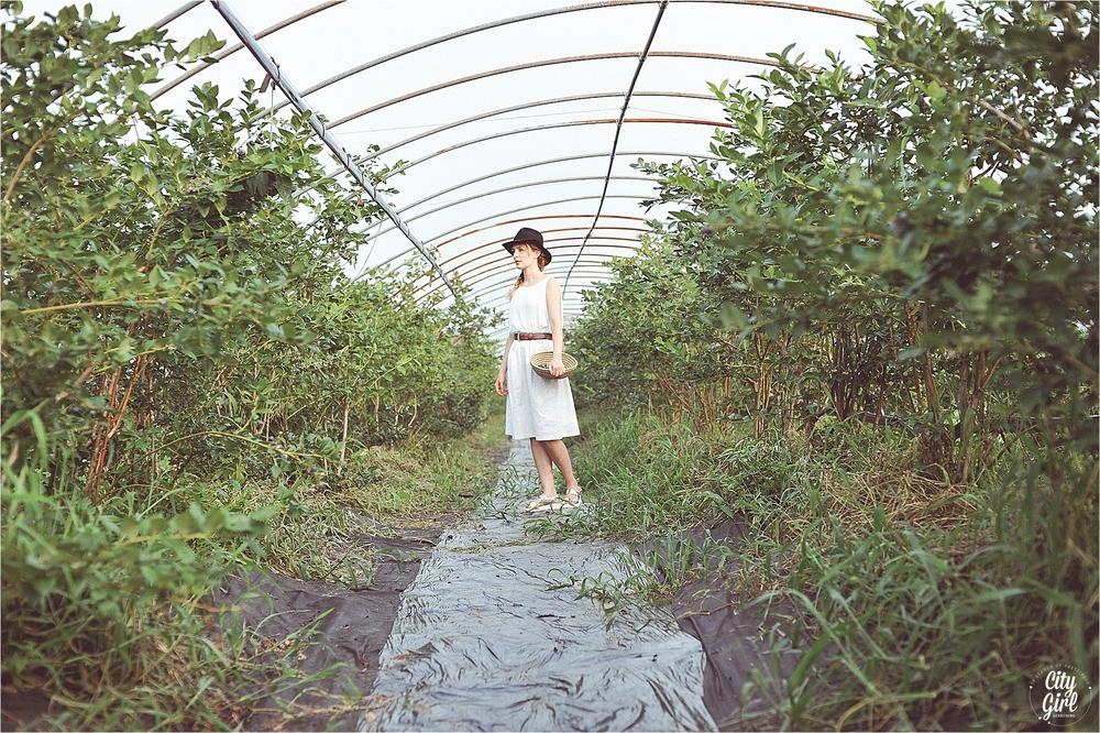 BlueberryFarmSouthKoreaHelen_0019.jpg