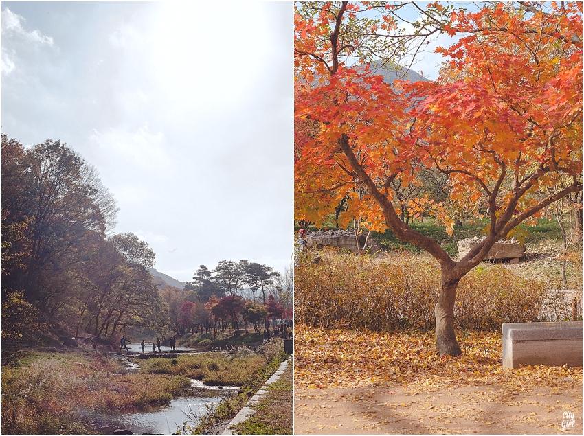 AutumnInKorea_0007.jpg
