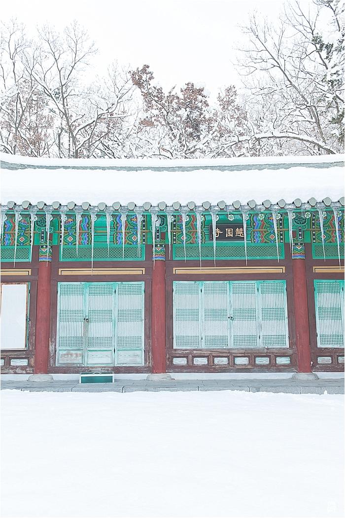 SnowInKorea_0001.jpg