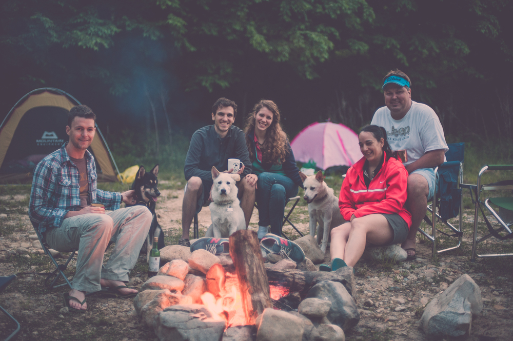CampingWithADogInKorea