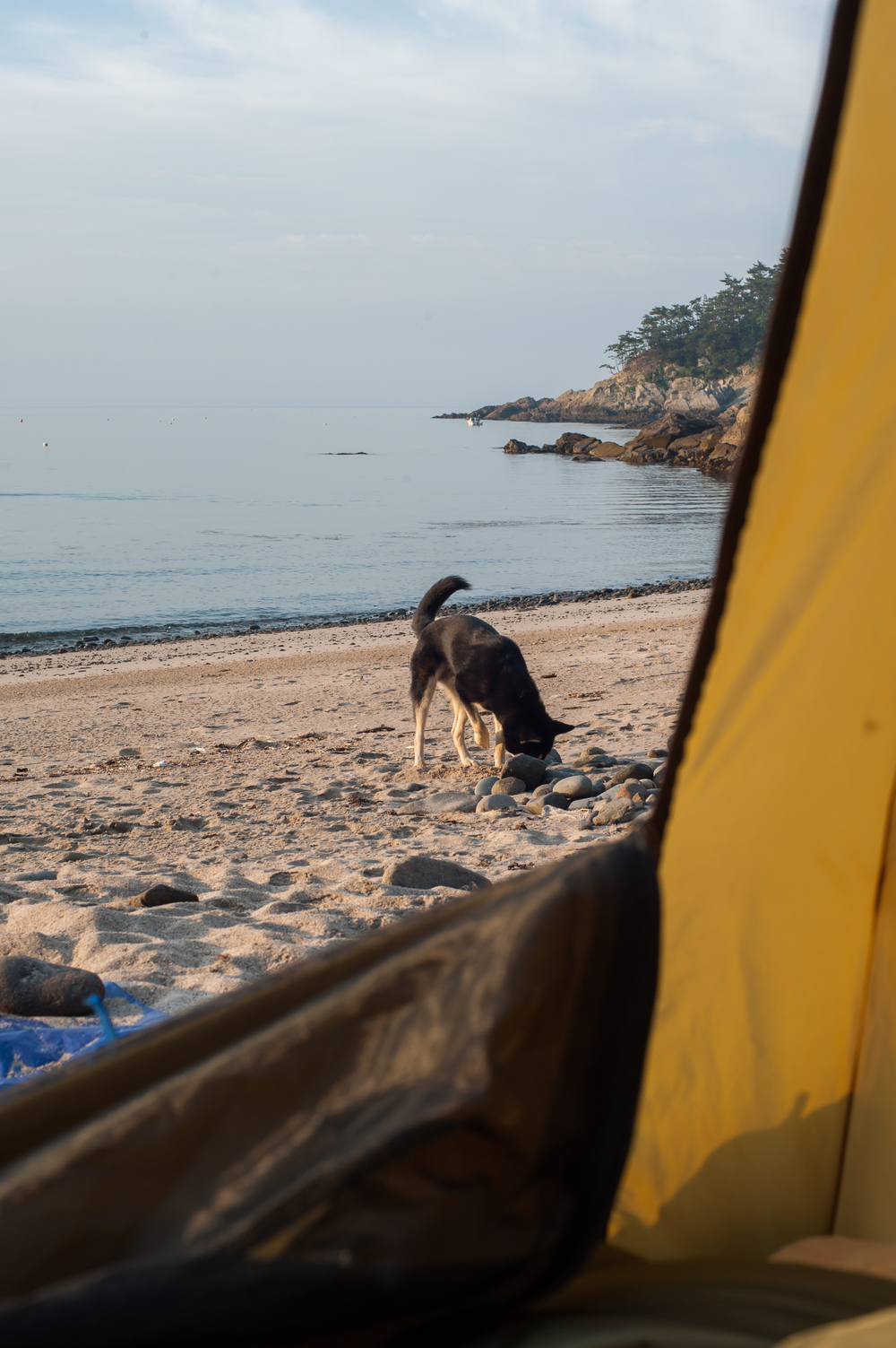 CampingOnNamhaeIslandSouthKorea (46 of 74).jpg