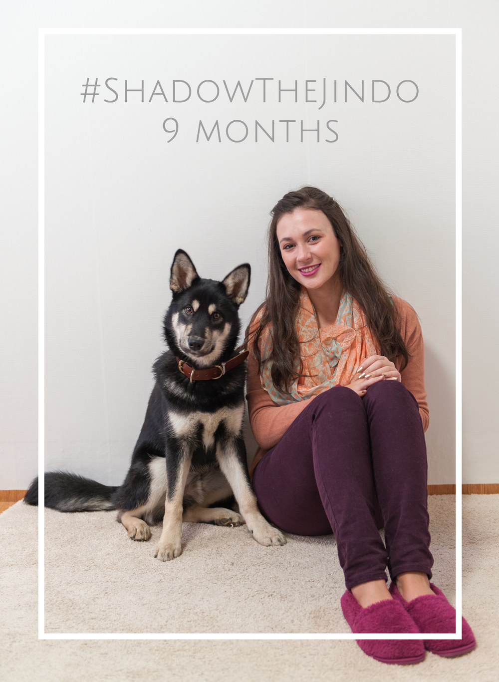ShadowTheJindo9Months.png