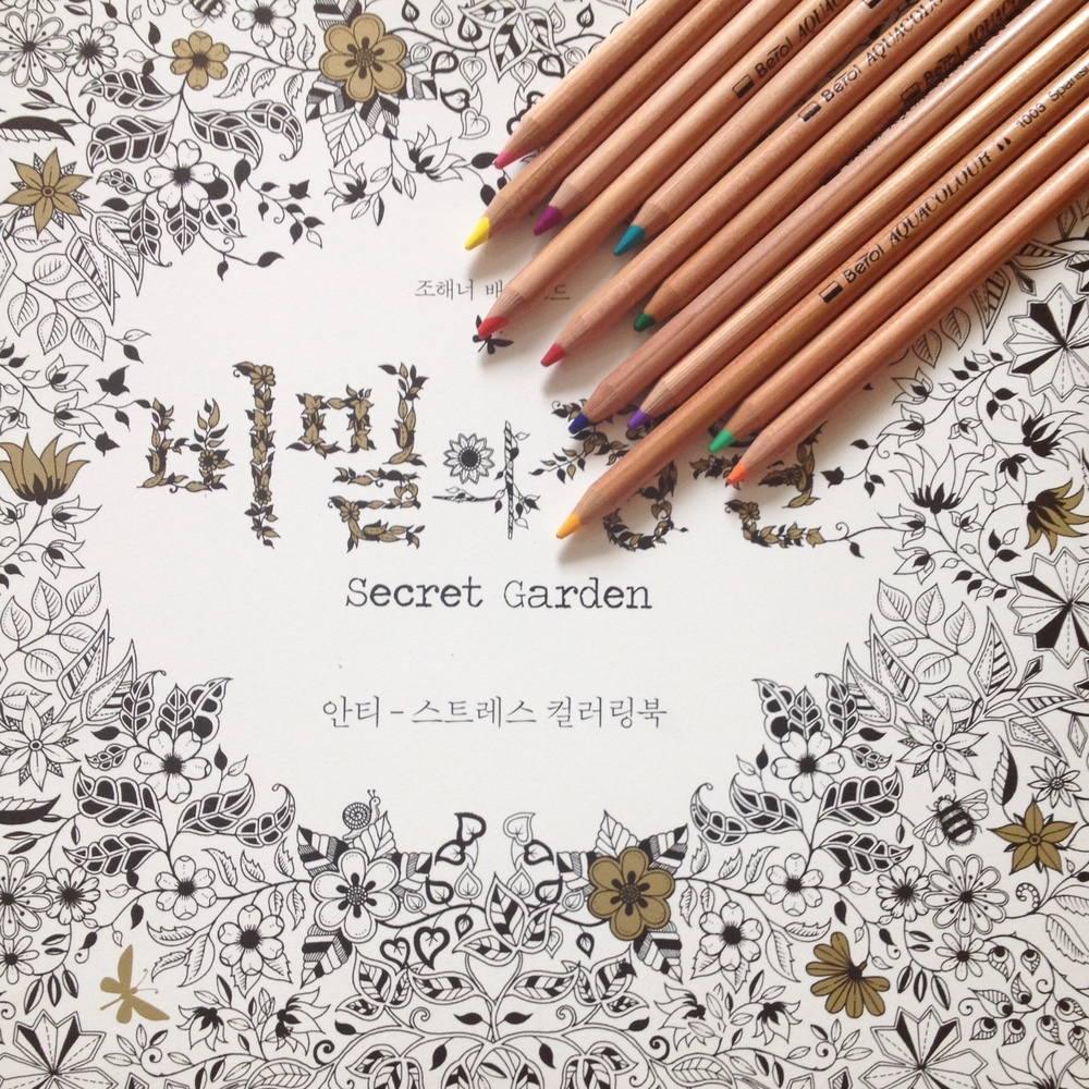 South korea coloring book - The Secret Garden Colouring Book Dults