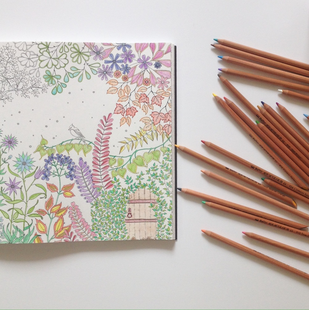 Secret Garden Anti Stress Adult Colouring Book By Johanna