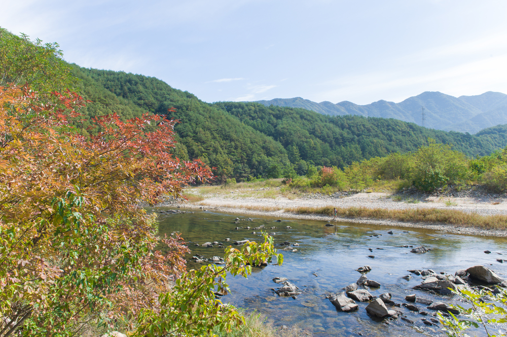 Fly Fishing in South Korea