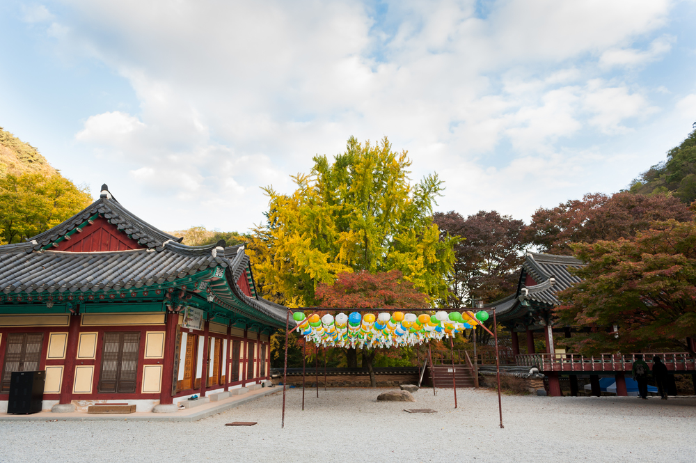 Naejangsan Autumn Fall Leaves Colours South Korea CityGirlSearching Photography (34 of 72).jpg