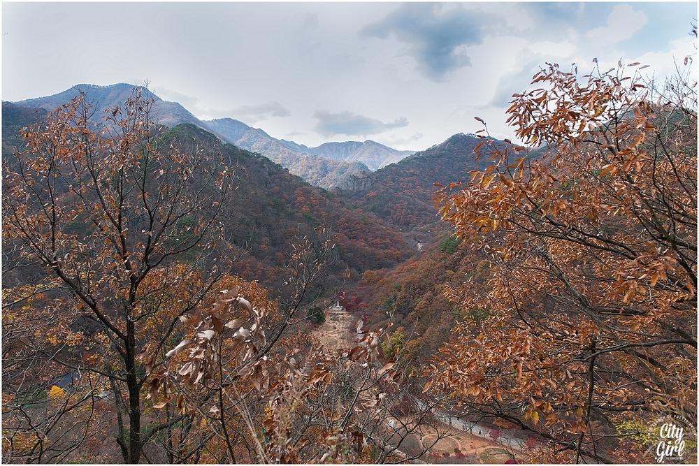 Baegyangsa Temple Naejangsan National Park (18 of 186).jpg
