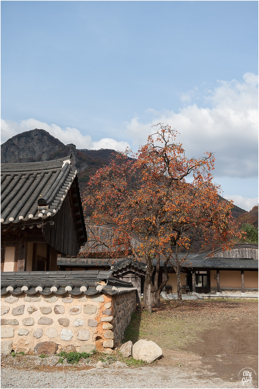 Baegyangsa Temple Naejangsan National Park (29 of 186).jpg