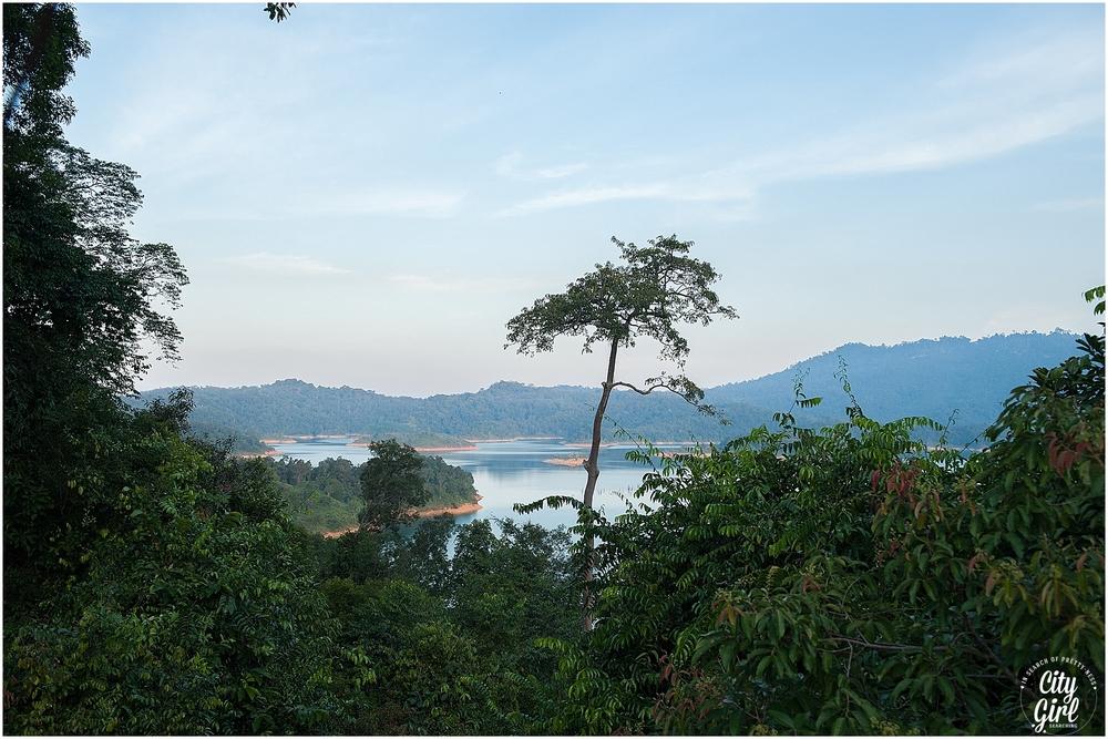 BorneoMalaysiaAugust2015 (85 of 166).jpg