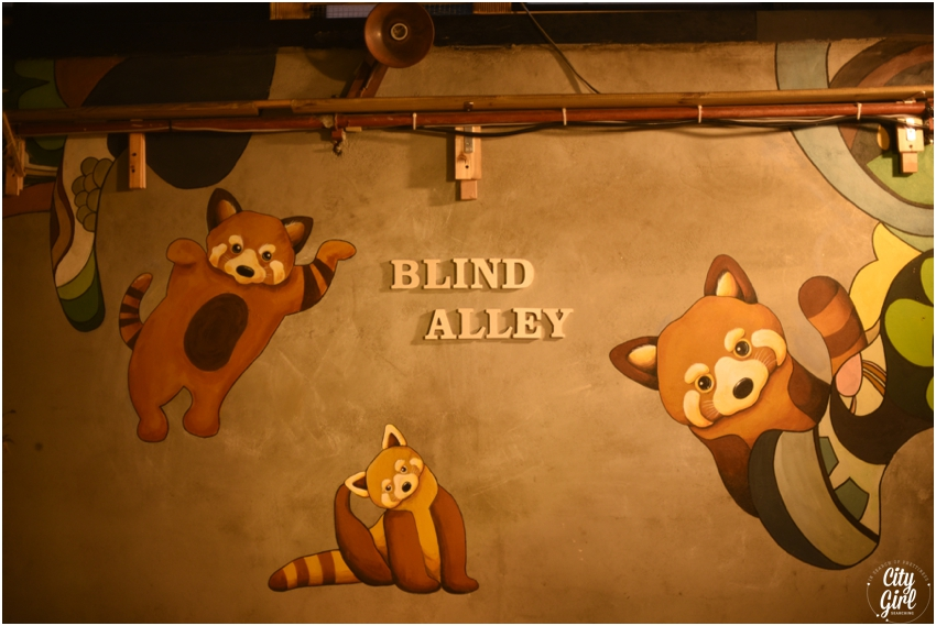 Blind Alley Racoon Cafe Seoul Things to do in Seoul Korea (26 of 43).jpg