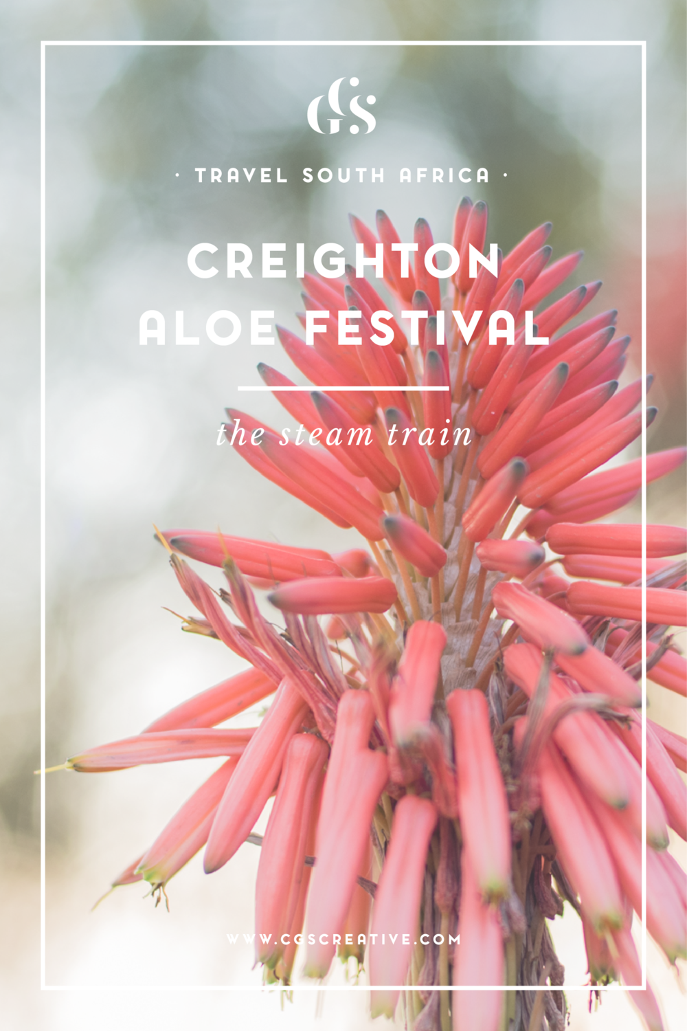 Creighton Aloe Festival Steam Train, Things to do in KZN, Creighton, South Africa Festivals