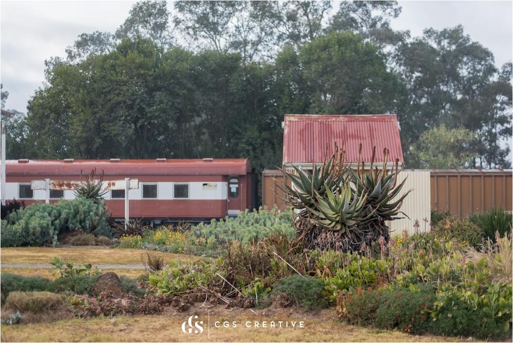 Creighton Aloe Festival South Africa by Roxy Hutton CGScreative (36 of 59).JPG
