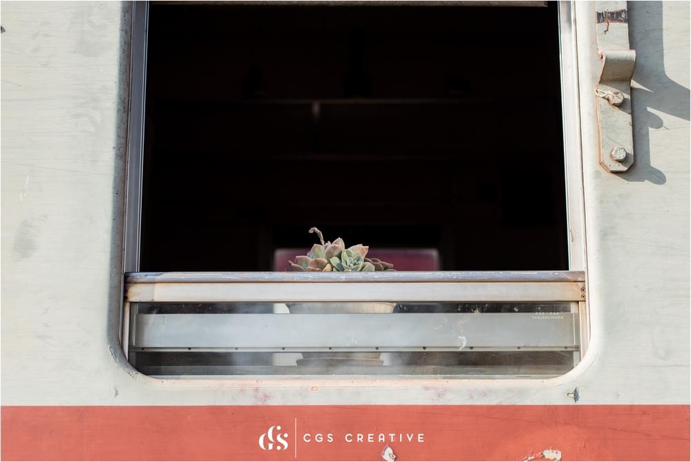 Creighton Aloe Festival South Africa by Roxy Hutton CGScreative (50 of 59).JPG