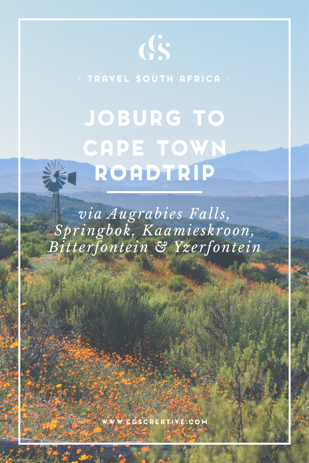 Joburg to Cape Town road trip with a dog travel south africa, namaqualand flowers, where to see flowers cape town, where to stay with a dog road trip south africa