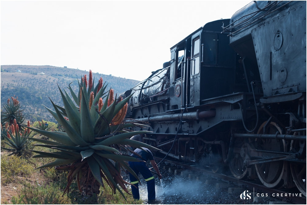 Creighton Steam Train Trip through Aloes by Roxy Hutton CGScreative (111 of 137).jpg