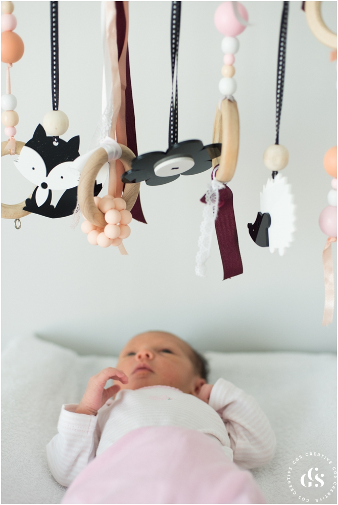 Little Interiors High Contrast Dangle Toys for Newborn Photos by Roxy Hutton of CGScreative & CityGirlSearching (15 of 20).jpg