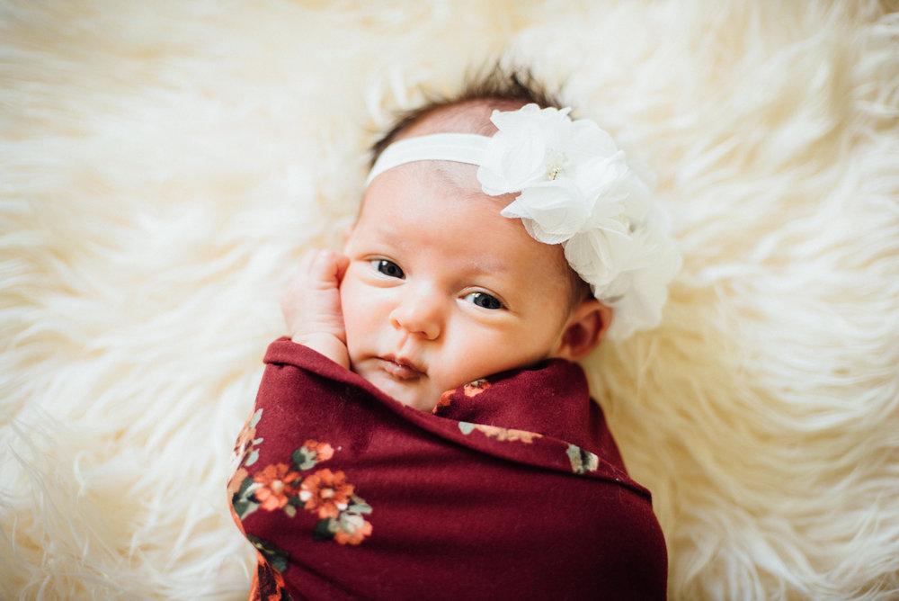 Everly Rose Newborn Photos by Roxy Hutton of CGScreative & CityGirlSearching (1 of 1).jpg