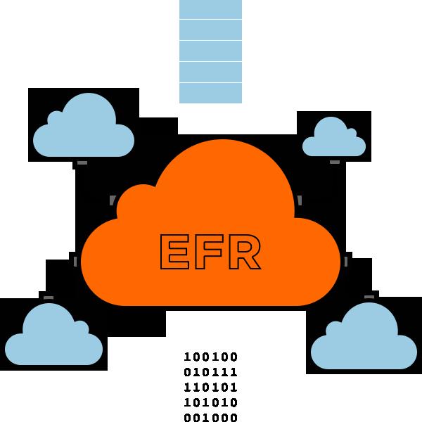 EFR - Electronic Farm Record