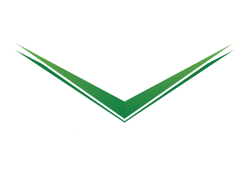 Driven Lifestyle Group