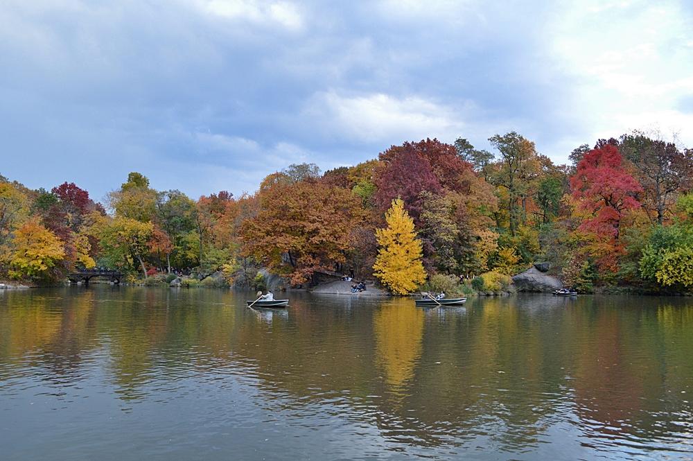 central-park-fall-reportista.JPG
