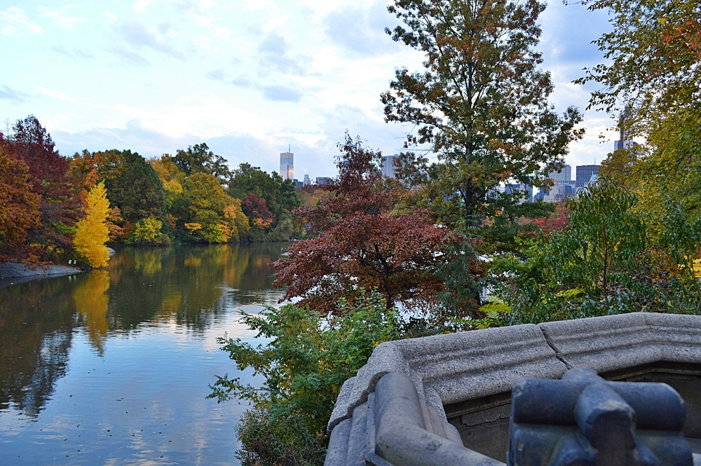 central-park-fall-reportista.JPG