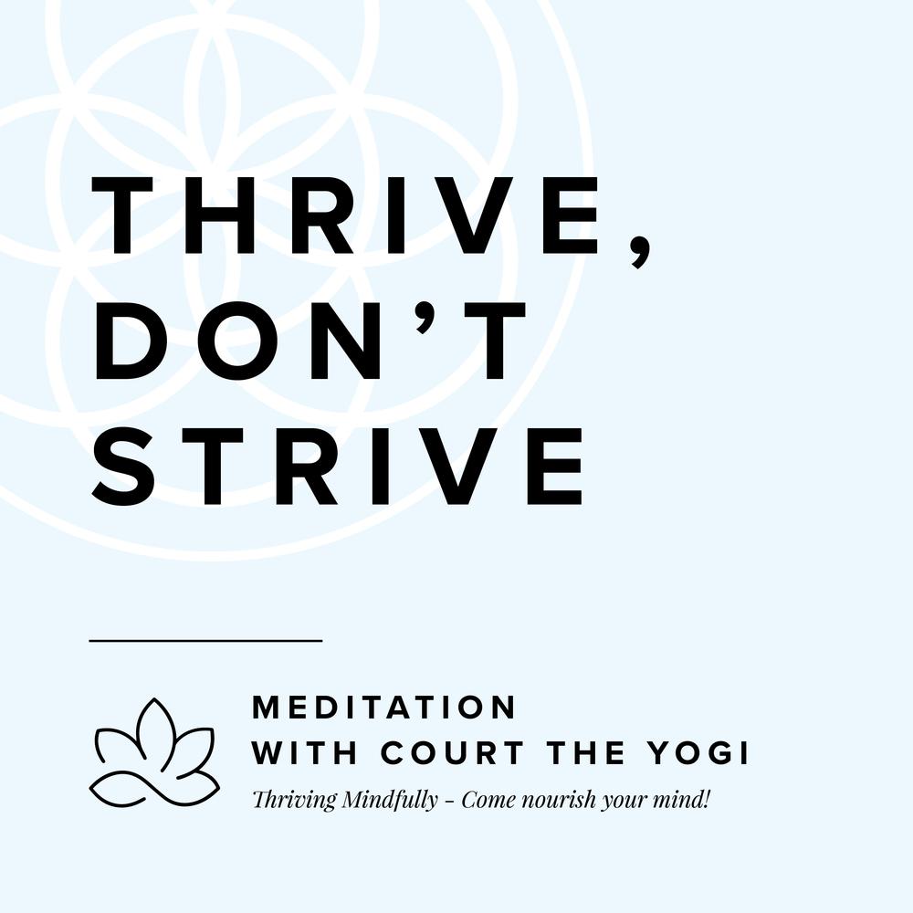 TJ_Meditation Yogi_Instagram.png