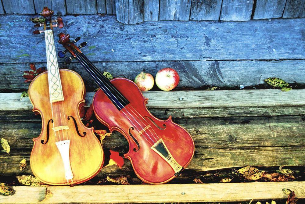 Rikspelman Thomas von Wachenfeldt  kommer med sin fiol och sin röst berätta historier ur folktradition och bjuda våra besökare på en resa genom tiderna. Foto: Thomas von Wachenfeldt