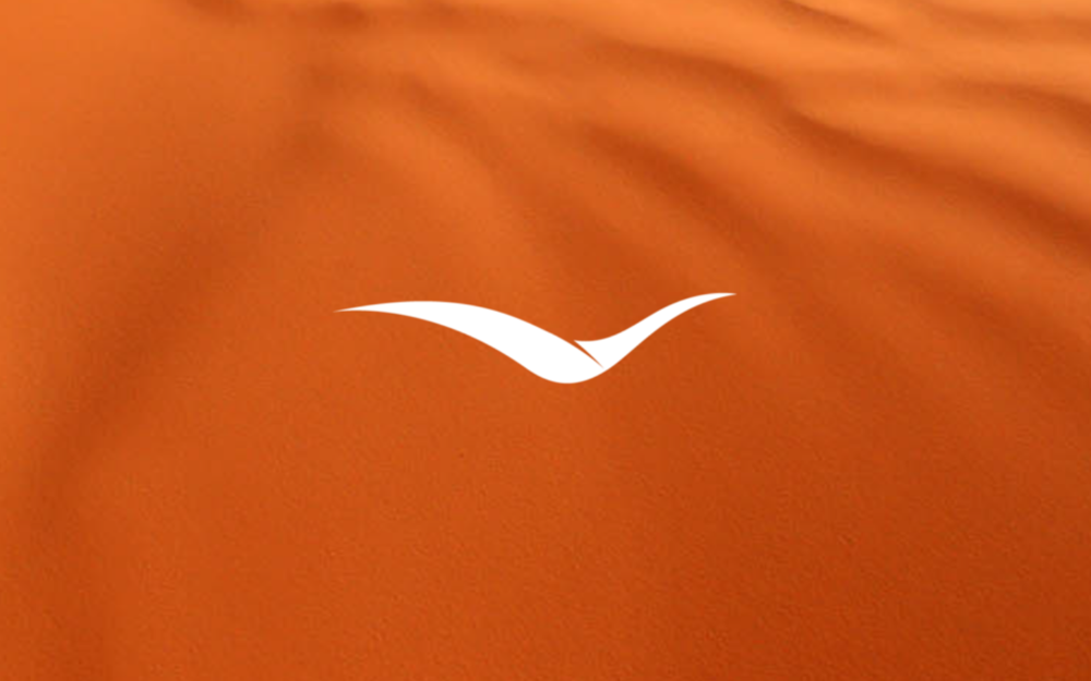 SANDHILL AIRLINES - Logo