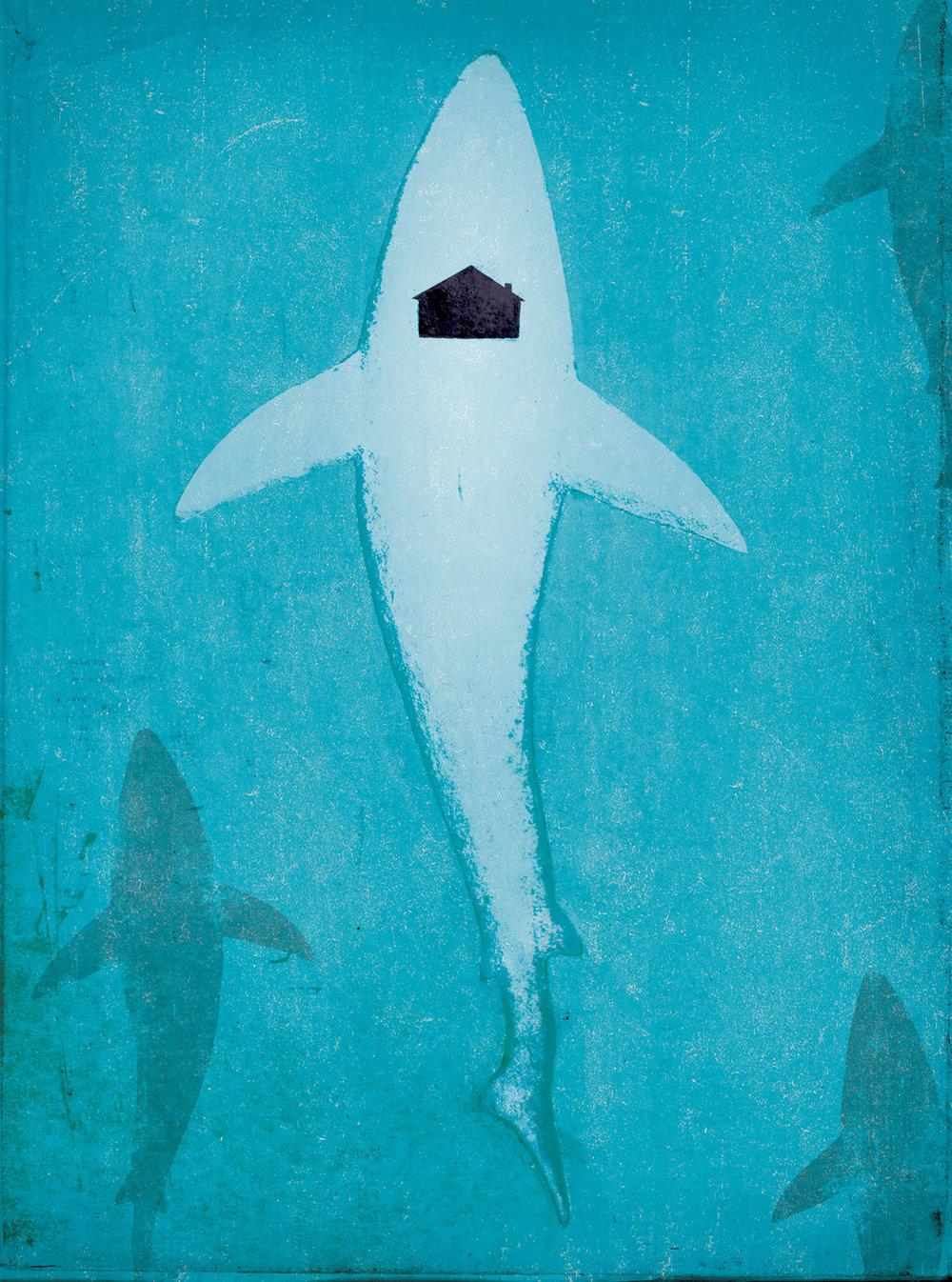 shark_housing.jpg