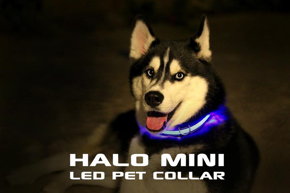 HALO mini