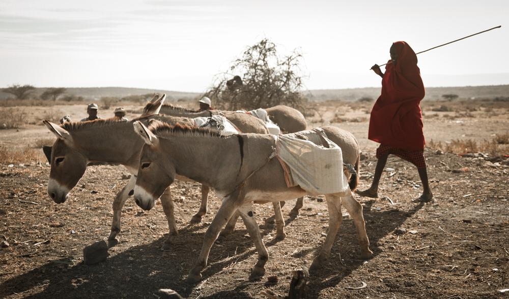 TanzaniaStory-8164.jpg