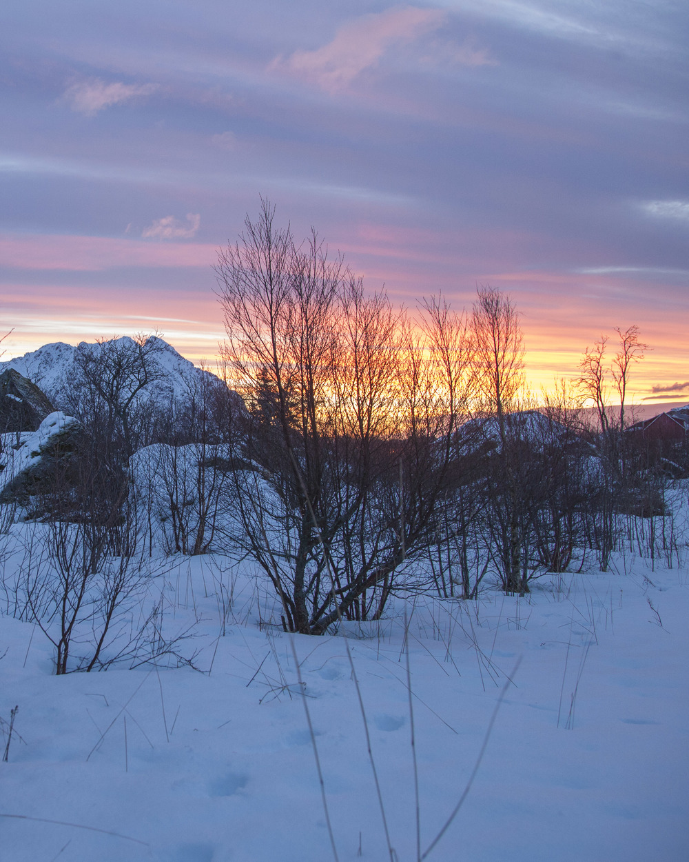 Norway Website_-2.jpg