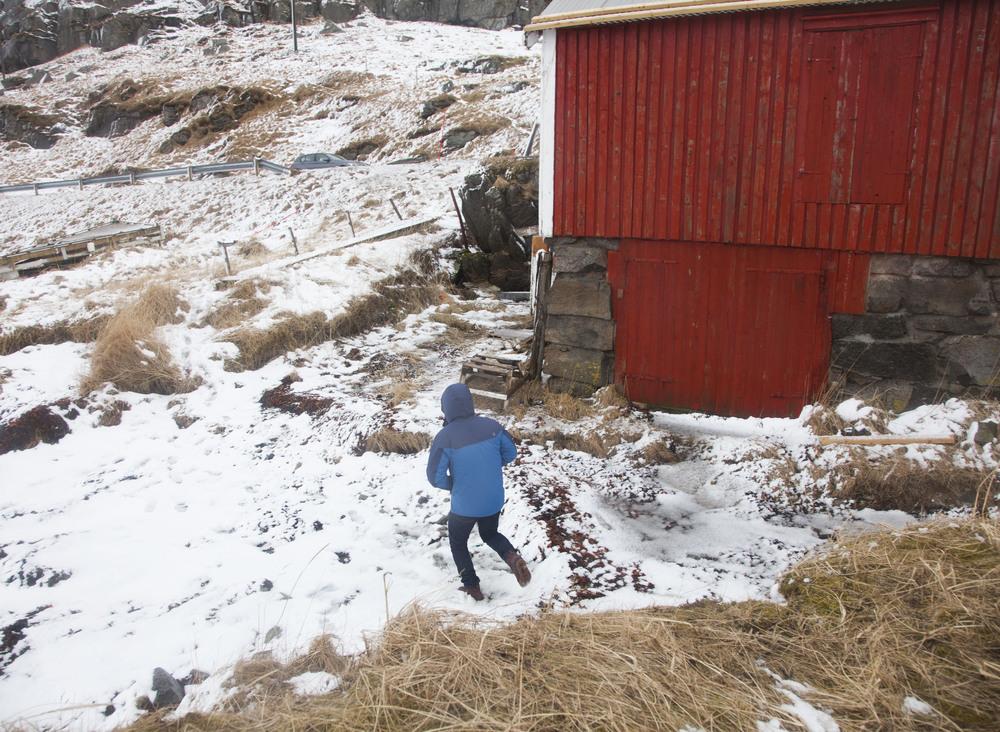 Norway Website_-9.jpg