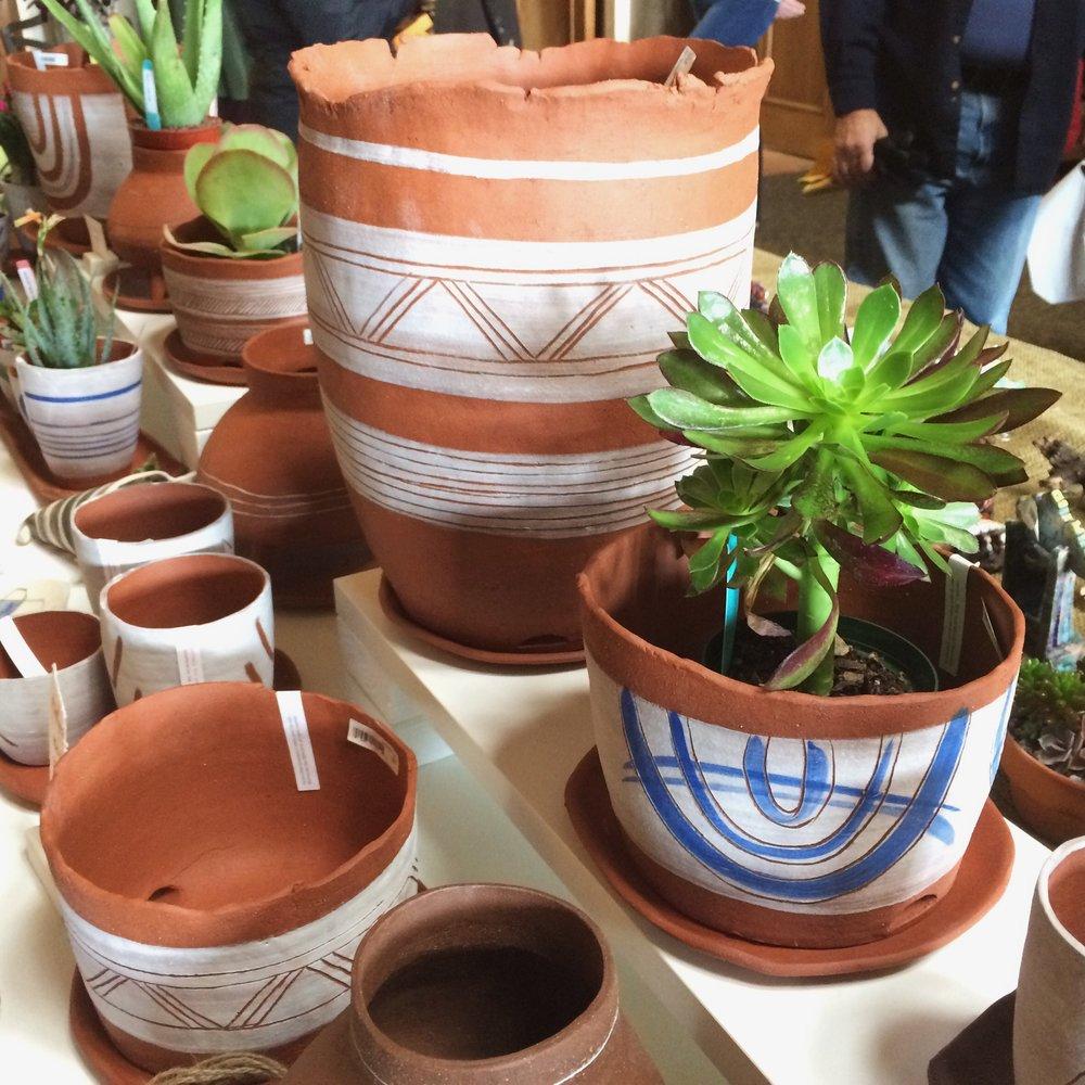denver botanic gardens cactus & succulent  show '16, denver, co