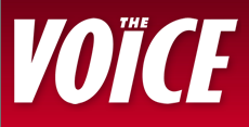 News   The Voice Online.png